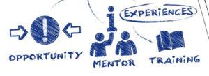 internshipdiagram